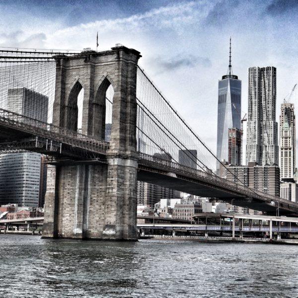 New York & Its Neighborhoods