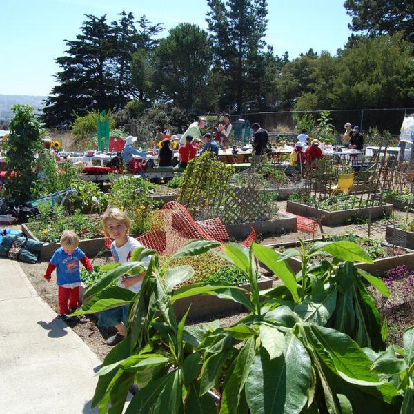 Growing Community Through Gardening